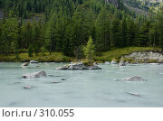 Разлив реки Кучерла. Дерево на островке. Стоковое фото, фотограф Андрей Пашкевич / Фотобанк Лори