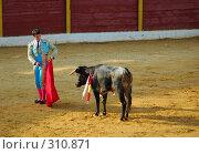 Купить «Коррида», фото № 310871, снято 13 августа 2006 г. (c) Знаменский Олег / Фотобанк Лори