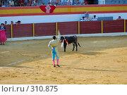Купить «Коррида», фото № 310875, снято 13 августа 2006 г. (c) Знаменский Олег / Фотобанк Лори