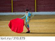 Купить «Коррида», фото № 310879, снято 13 августа 2006 г. (c) Знаменский Олег / Фотобанк Лори