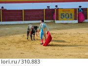 Купить «Коррида», фото № 310883, снято 13 августа 2006 г. (c) Знаменский Олег / Фотобанк Лори