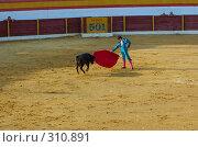 Купить «Коррида», фото № 310891, снято 13 августа 2006 г. (c) Знаменский Олег / Фотобанк Лори