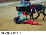 Купить «Коррида», фото № 310911, снято 13 августа 2006 г. (c) Знаменский Олег / Фотобанк Лори