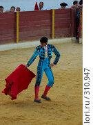 Купить «Коррида», фото № 310947, снято 13 августа 2006 г. (c) Знаменский Олег / Фотобанк Лори