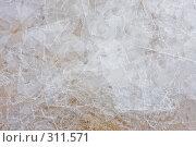 Купить «Пластины тонкого льда», фото № 311571, снято 5 апреля 2008 г. (c) Алексей Волков / Фотобанк Лори