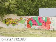 Купить «Забор с граффити», фото № 312383, снято 4 июня 2008 г. (c) Эдуард Межерицкий / Фотобанк Лори