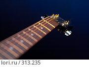 Купить «Гриф гитары», фото № 313235, снято 15 мая 2008 г. (c) Константин Тавров / Фотобанк Лори