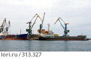 Купить «Суда в  морском порту», фото № 313327, снято 6 июня 2008 г. (c) RedTC / Фотобанк Лори