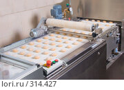 Купить «Свежие булочки на конвейере», фото № 314427, снято 29 октября 2006 г. (c) Сергей Байков / Фотобанк Лори