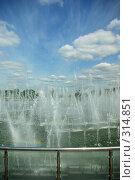 Купить «Музей-заповедник Царицыно. Фонтан», фото № 314851, снято 8 июня 2008 г. (c) Саломатников Владимир / Фотобанк Лори