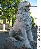 Купить «Санкт-Петербург. Львиный мостик. Лев», фото № 316275, снято 30 мая 2008 г. (c) Морковкин Терентий / Фотобанк Лори