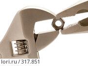 Купить «Разводной ключ с гайкой», фото № 317851, снято 9 июня 2008 г. (c) Угоренков Александр / Фотобанк Лори
