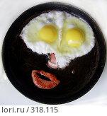 Купить «Мой завтрак», фото № 318115, снято 5 января 2005 г. (c) Барабанов Максим Олегович / Фотобанк Лори