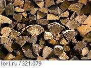 Купить «Кладка дров», фото № 321079, снято 18 мая 2008 г. (c) Боев Дмитрий / Фотобанк Лори