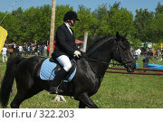 Купить «Конкур», фото № 322203, снято 12 июня 2008 г. (c) Талдыкин Юрий / Фотобанк Лори
