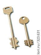 Купить «Два золотых ключа на белом фоне», фото № 323631, снято 23 апреля 2008 г. (c) Останина Екатерина / Фотобанк Лори