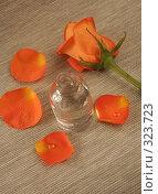 Купить «Одна бутылка с маслом и цветок», фото № 323723, снято 28 января 2008 г. (c) Останина Екатерина / Фотобанк Лори