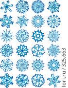24 снежинки. Стоковая иллюстрация, иллюстратор Даниил Кириллов / Фотобанк Лори