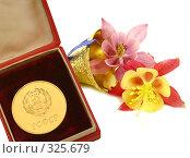 Купить «Золотая медаль в коробочке с колокольчиком», фото № 325679, снято 11 июня 2008 г. (c) Коннов Леонид Петрович / Фотобанк Лори