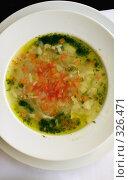 Купить «Суп вегетарианский с овощами в белой тарелке. Крупный план», фото № 326471, снято 13 июня 2008 г. (c) Татьяна Белова / Фотобанк Лори