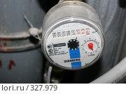 Купить «Счетчик расхода холодной воды», эксклюзивное фото № 327979, снято 18 июня 2008 г. (c) Ирина Терентьева / Фотобанк Лори