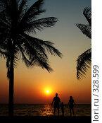 Купить «Семья на закате. Пейзаж», фото № 328599, снято 21 февраля 2018 г. (c) Гладских Татьяна / Фотобанк Лори
