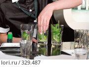 """Купить «Приготовление коктейля """"Мохито"""" в баре ресторана», фото № 329487, снято 20 июня 2008 г. (c) Татьяна Белова / Фотобанк Лори"""