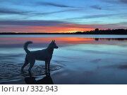 Купить «Закат на озере», фото № 332943, снято 15 июня 2008 г. (c) Игорь Соколов / Фотобанк Лори