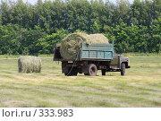 Купить «Уборка сена», эксклюзивное фото № 333983, снято 12 июня 2008 г. (c) Дмитрий Неумоин / Фотобанк Лори