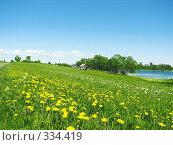 Купить «Лужок на о.Кижи.», фото № 334419, снято 17 июня 2008 г. (c) Людмила Жмурина / Фотобанк Лори