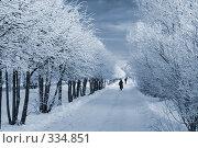Зимний путь. Стоковое фото, фотограф podfoto / Фотобанк Лори