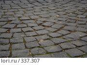 Брусчатка. Красная площадь. Москва. (2006 год). Стоковое фото, фотограф Андреев Виктор / Фотобанк Лори