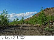 Купить «Путь у подножия горы», фото № 341123, снято 23 июня 2008 г. (c) Валерий Александрович / Фотобанк Лори