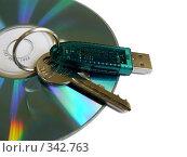 Купить «Защита информации. Электронный ключ», фото № 342763, снято 27 июня 2008 г. (c) Владимир Сергеев / Фотобанк Лори