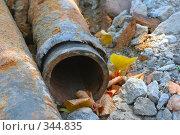 Купить «Старая ржавая труба», фото № 344835, снято 4 июля 2008 г. (c) Андрей Рыбачук / Фотобанк Лори