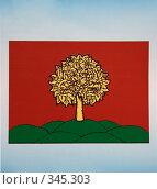 Купить «Флаг Липецкой области», фото № 345303, снято 15 июня 2008 г. (c) Юрий Егоров / Фотобанк Лори