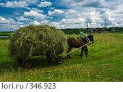 Купить «Пригород Могилева. Лошадь и сено на телеге», фото № 346923, снято 5 июля 2008 г. (c) Виктор Пелих / Фотобанк Лори