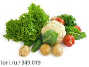 Купить «Натюрморт из овощей», фото № 349019, снято 6 июля 2008 г. (c) Андрей Рыбачук / Фотобанк Лори