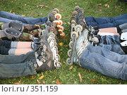 Купить «Два ряда ног роллеров. Two row of rollers legs», фото № 351159, снято 30 сентября 2007 г. (c) Losevsky Pavel / Фотобанк Лори