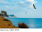 Купить «Кавказские горы на берегу Черного моря», фото № 351415, снято 20 июня 2008 г. (c) Артем Костров / Фотобанк Лори