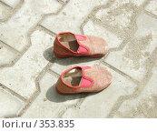 Купить «Тапочки», фото № 353835, снято 9 июля 2008 г. (c) Овчинников Владимир / Фотобанк Лори