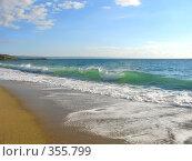 Купить «Прибой на золотом песке», фото № 355799, снято 11 сентября 2006 г. (c) Татьяна Заварина / Фотобанк Лори