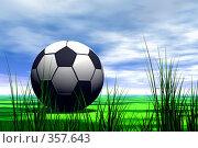 Купить «Футбольные мяч в поле», иллюстрация № 357643 (c) ElenArt / Фотобанк Лори
