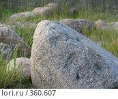 Купить «Время собирать камни», фото № 360607, снято 27 июня 2008 г. (c) Алексей Гунев / Фотобанк Лори