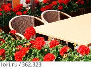 Купить «Уютное летнее кафе среди красных цветов Beautiful open-air cafe», фото № 362323, снято 16 июня 2008 г. (c) Вероника Галкина / Фотобанк Лори