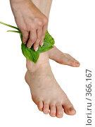 Купить «Лечение раны листом подорожника», фото № 366167, снято 21 июля 2008 г. (c) pzAxe / Фотобанк Лори