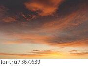 Купить «Небесные пейзажи», фото № 367639, снято 22 июля 2008 г. (c) Владимир Тимошенко / Фотобанк Лори