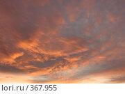 Купить «Небесные пейзажи», фото № 367955, снято 22 июля 2008 г. (c) Владимир Тимошенко / Фотобанк Лори
