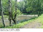Купить «Митькино озеро (Верхнее)», фото № 371355, снято 5 июля 2003 г. (c) Павел Мурадов / Фотобанк Лори