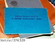 Купить «Личная книжка матери на получение государственного пособия», фото № 374539, снято 24 февраля 2008 г. (c) Татьяна Дигурян / Фотобанк Лори